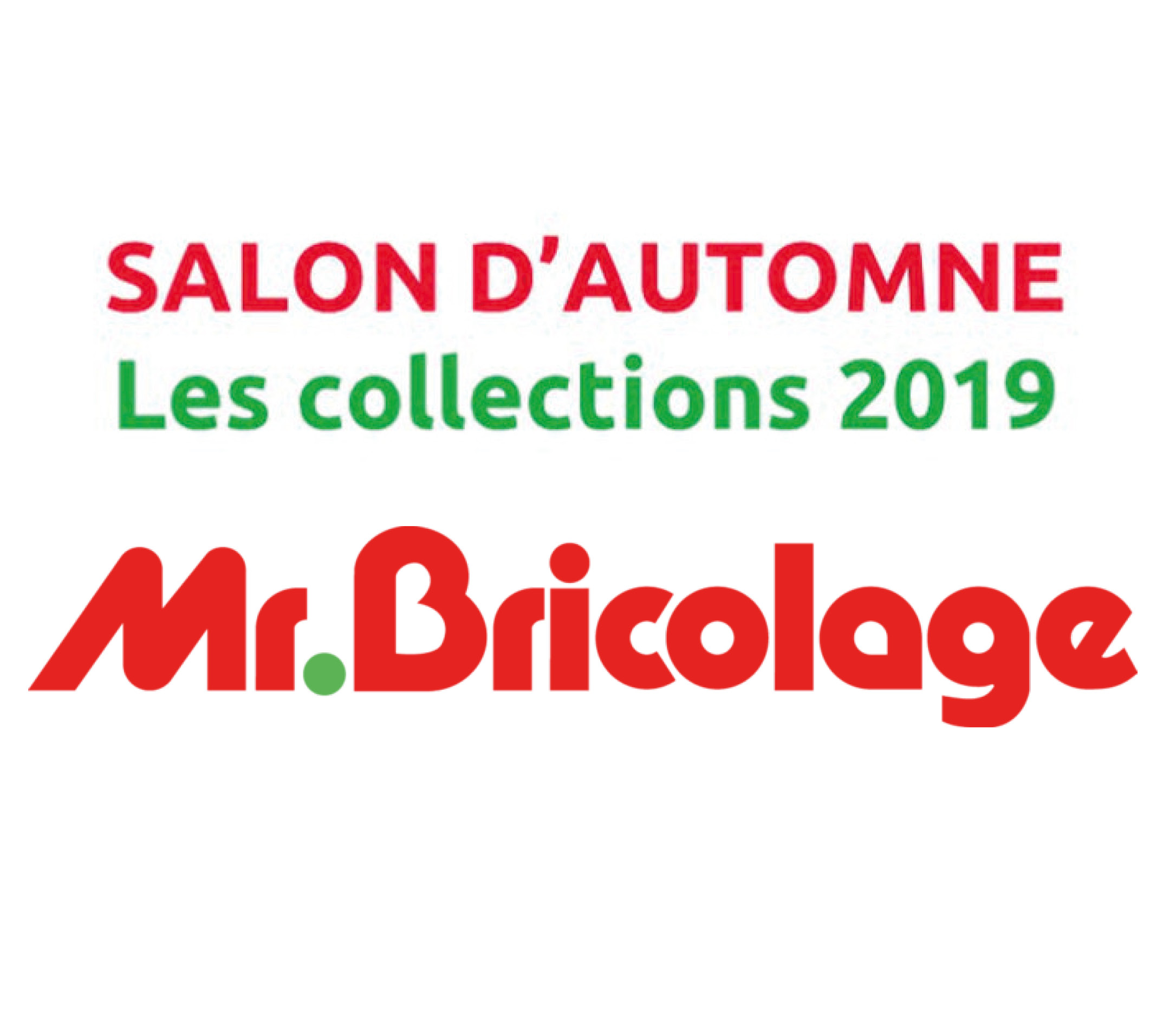 picto salon MR BRICO 2.jpg